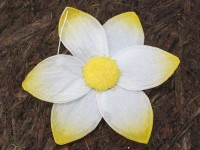 Květ papírový žlutý