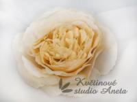 Květ Mary Rose krémový...