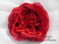 Květ Mary Rose červená...