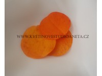List hoja oranžový...