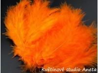 Pštrosí peří oranžové...