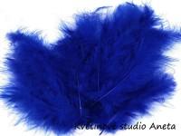 Pštrosí peří modré tm....