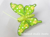 Motýlek malý zelený...
