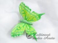 Motýlek zelený  střední třpytivý...