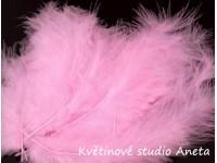 Pštrosí peří růžové...