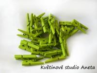 Kolíček dřevěný zelený mini...