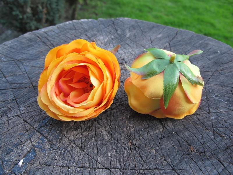 Květ růže anglická oranžová
