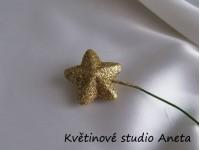 Hvězdička na drátku zlatá...