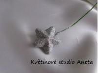 Hvězdička na drátku stříbrná...