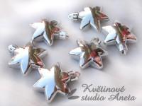 Vánoční hvězdička plast stříbrná lesk...