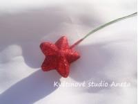 Hvězdička na drátku červená...