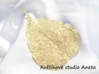 List skelet zlatý...