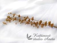 UK větvička eukalyptu zlatá...
