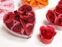 Mýdlová poupátka růží bordo...